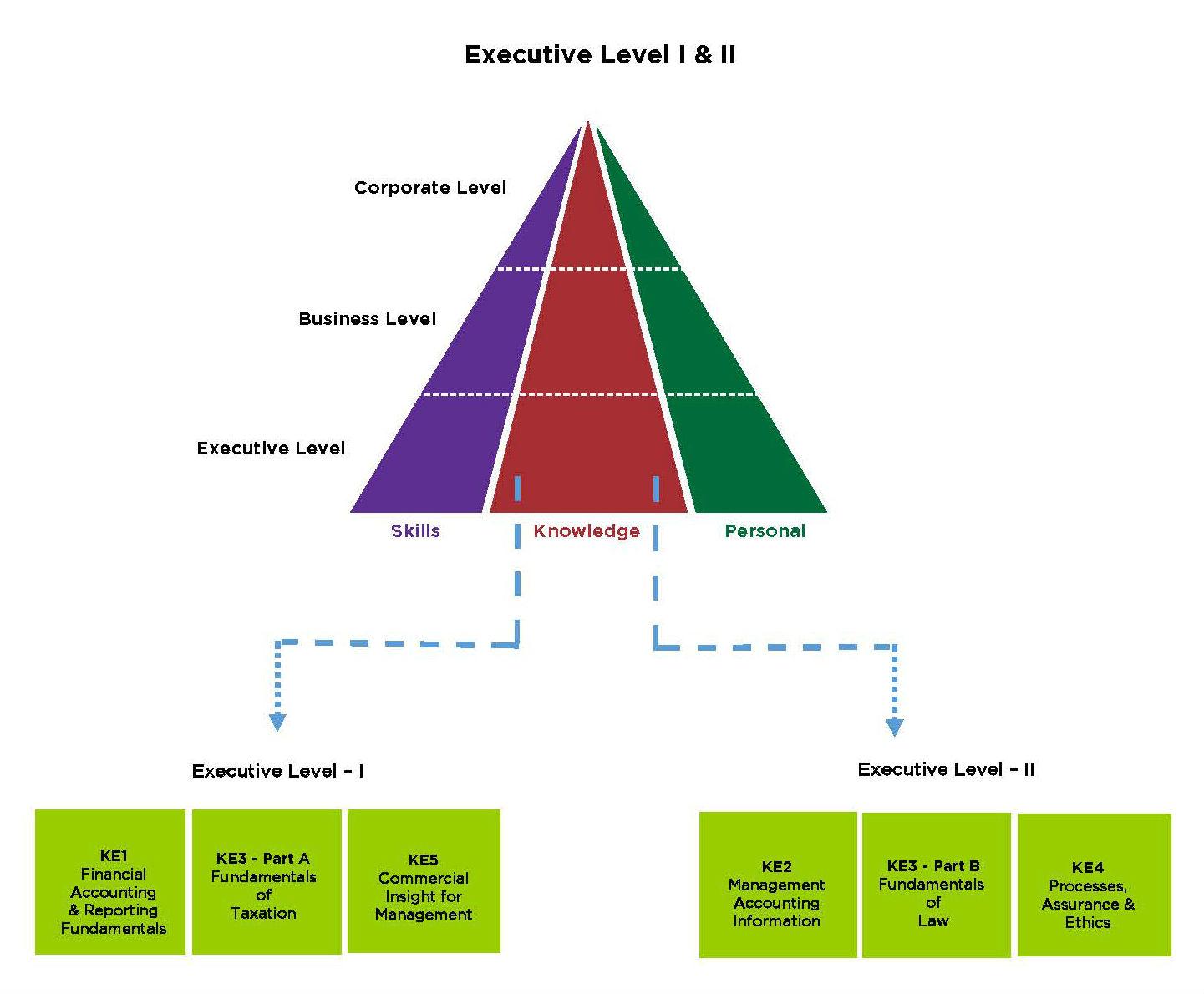 curriculum vitae meaning in sinhala